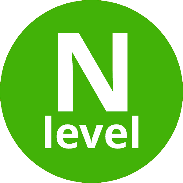 N level icon